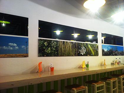 Photos of the interior.
